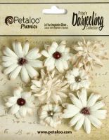 Petaloo Darjeeling Mini Mix x 8 - Teastained Cream