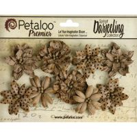 Petaloo Darjeeling Paper Wild Blossoms 9/Pkg - Craft Brown