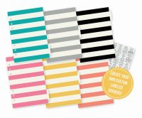 Simple Stories Carpe Diem Basic Dividers