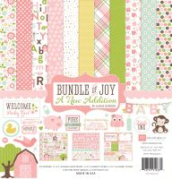 Echo Park Bundle of Joy 2 Girl 12x12 Collection Kit