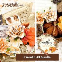 Prima Marketing Amber Moon - I Want It All Bundle