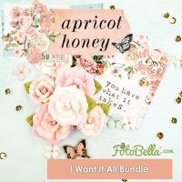 Prima Marketing Apricot Honey 12x12 I Want It ALL! Bundle