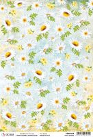 Ciao Bella Rice Paper A4 White Daisies