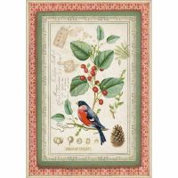 Stamperia A4 Decoupage Rice Paper packed Winter Botanic little bird on holly