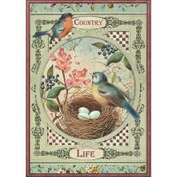 Stamperia A4 Rice paper packed Country life Birds
