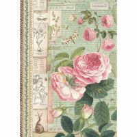 Stamperia A4 Rice paper packed Botanic English Roses with snail
