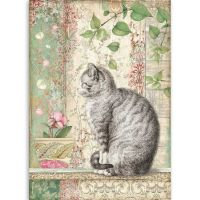 Stamperia A4 Rice paper packed Cat