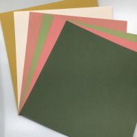 Princess coordinating Card Stock selected by FotoBella (12 sheets)
