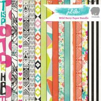 My Minds Eye Jubilee - Wild Berry 12x12 Paper Bundle (16 sheets)