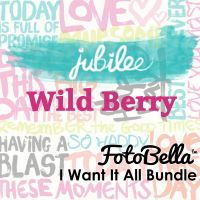 My Minds Eye Jubilee - Wild Berry 12x12 I Want It All Bundle