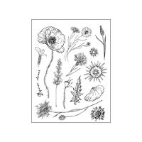 Stamperia High Definition Stamp cm.14x18 Floral
