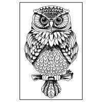 Stamperia High Definition Stamp 7cmx11cm -  Owl (Gufo)