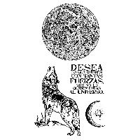 Stamperia HD Natural Rubber Stamp cm.10x16,5 Cosmos wolf