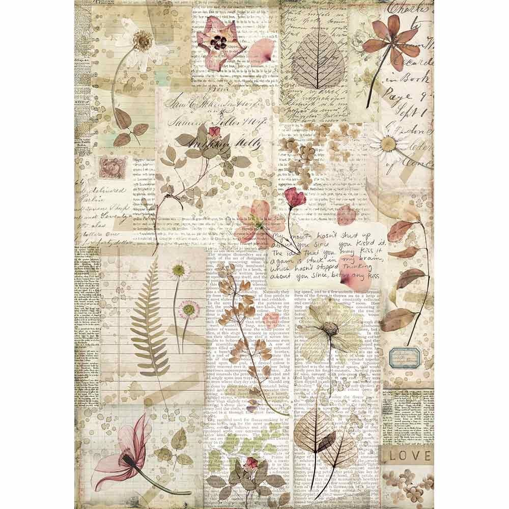 Stamperia A4 Rice paper packed Pressed flowers