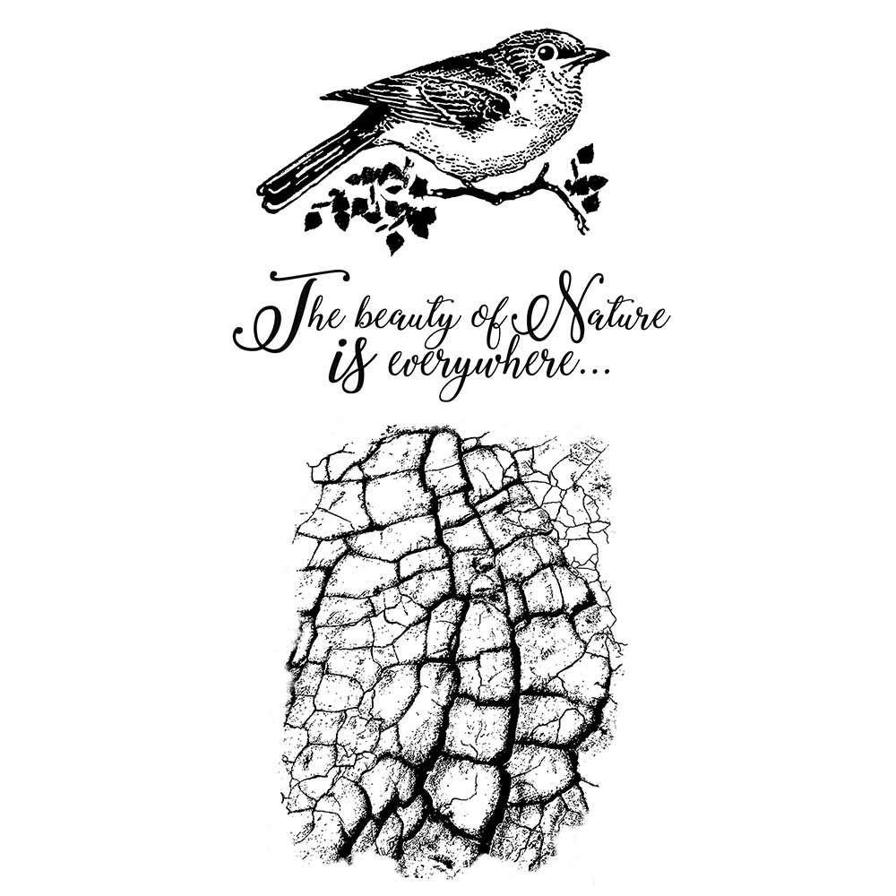 Stamperia HD Natural Rubber Stamp cm.10x16,5 Cosmos bird
