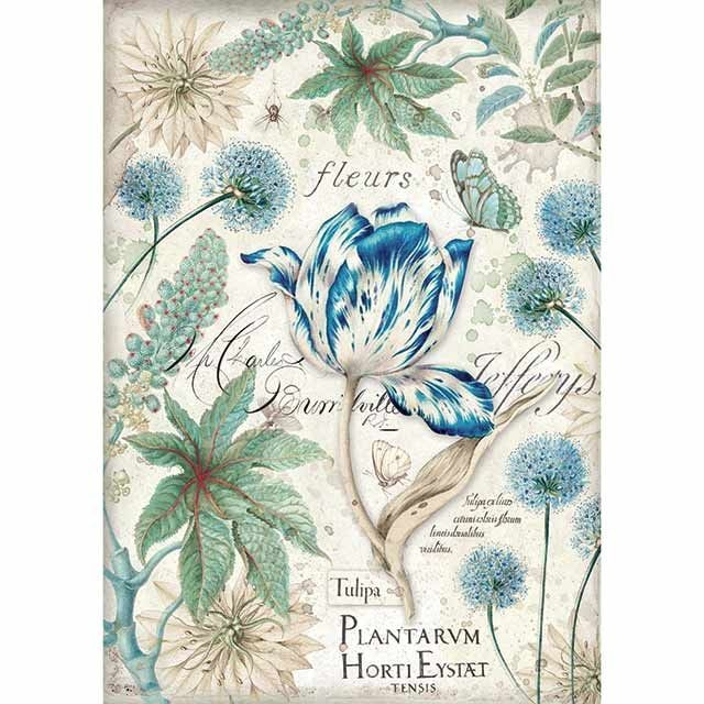 Stamperia A4 Rice paper packed Blue Tulip