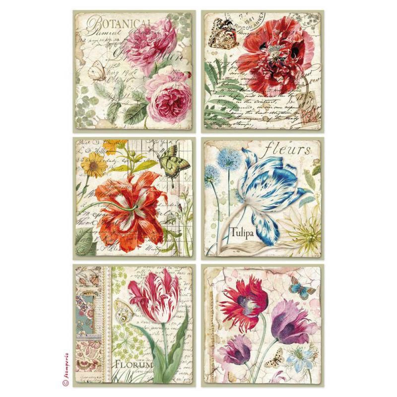 Stamperia A4 Rice paper packed Botanic Floer cards